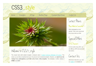css3templates Style