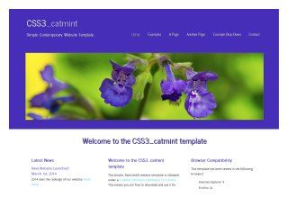 css3templates Catmint